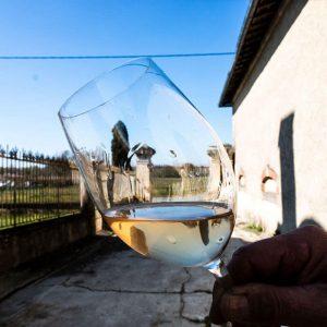 vin-rosé chateau moulis